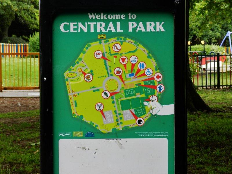 You are browsing images from the article: Urok Central Park w Peterborough
