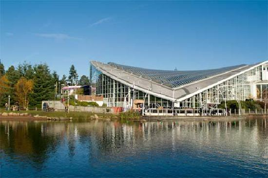 You are browsing images from the article: Center Parcs Whinfell Forest - park wakacyjny
