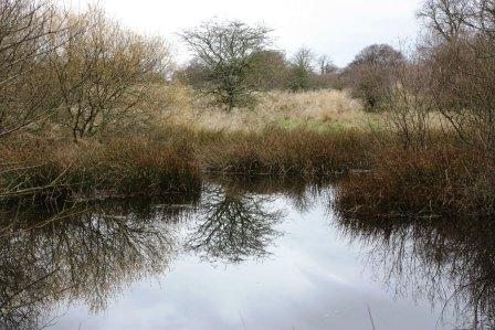 You are browsing images from the article: Almondell and Calderwood Country Park - strzeżona tajemnica West Lothian