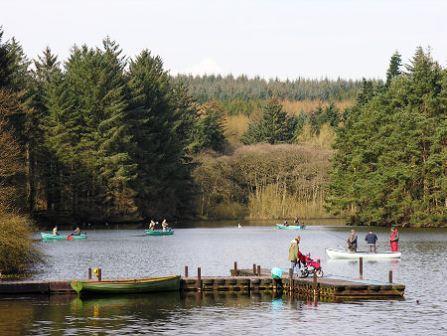 You are browsing images from the article: Beecraigs Country Park - 370 hektarów przyrody i atrakcji niedaleko Edynburga