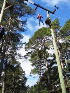 You are browsing images from the article: Landmark Forest Adventure - park przygody i rozrywki